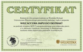 WILCACCORA IMPULSO